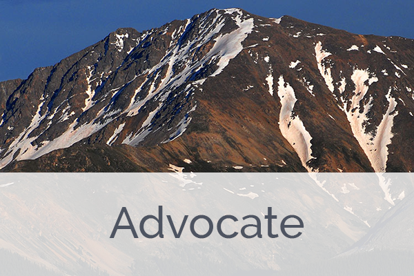 ACES Advocate Level Member